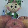 加積りんご