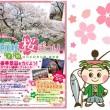 庄川桜まつり